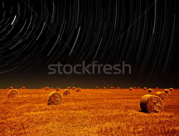 Night landscape of farm field  Stock photo © Anna_Om