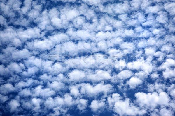 Kék felhős égbolt sok fehér bolyhos Stock fotó © Anna_Om