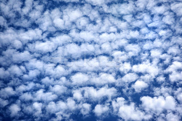 Blau bewölkt Himmel viele weiß fluffy Stock foto © Anna_Om