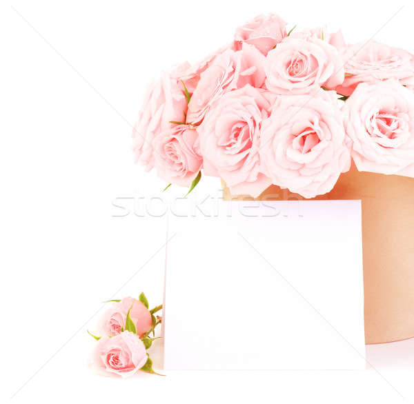 Pot rose roses fraîches carte vierge belle Photo stock © Anna_Om