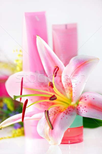 Fresco rosa lírio creme flor natureza Foto stock © Anna_Om