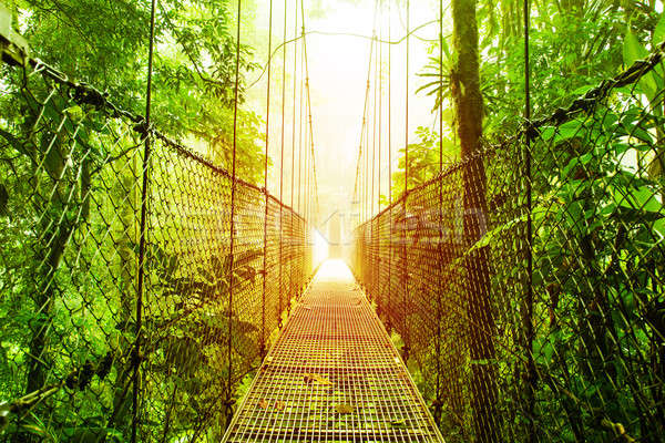 Arenal Hanging Bridges park of Costa Rica Stock photo © Anna_Om