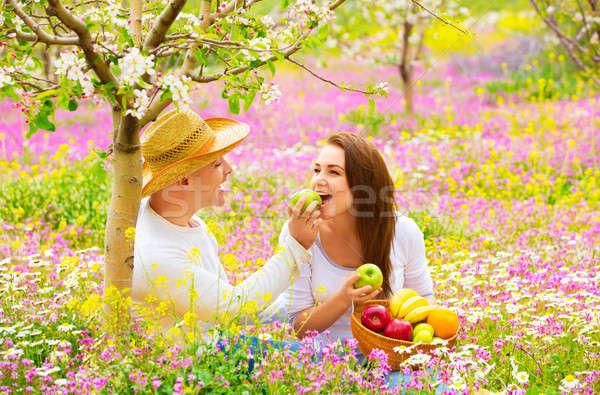 Сток-фото: два · любителей · пикника · красивой · весны · саду