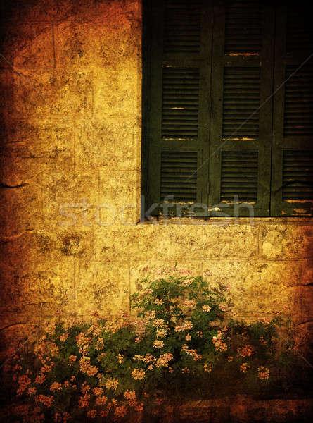 Old house grunge photo Stock photo © Anna_Om