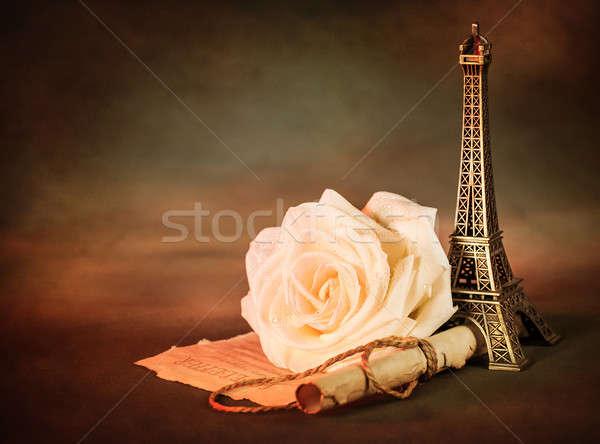 Wzrosła papieru przejdź zdjęcie piękna martwa natura Zdjęcia stock © Anna_Om