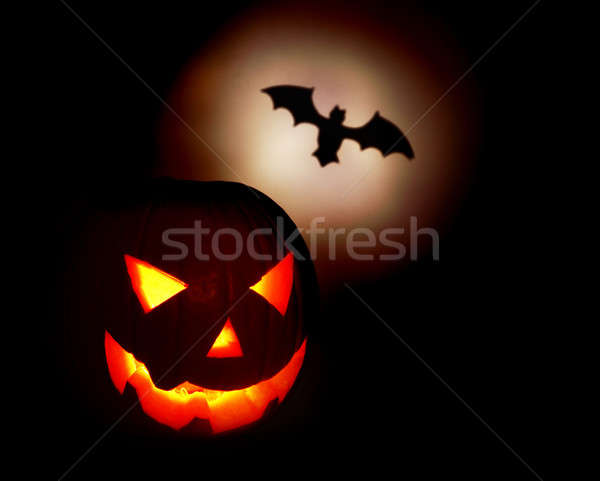 Halloween cauchemar bat isolé noir Photo stock © Anna_Om