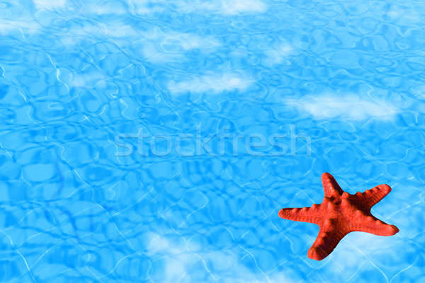 Water background with red starfish Stock photo © Anna_Om