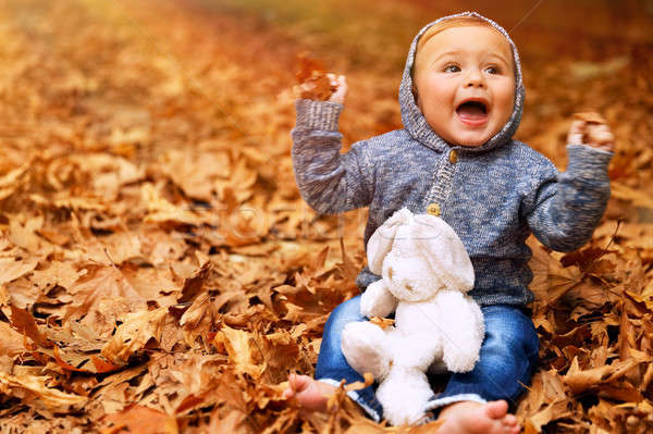 Stock photo: Baby boy playing in autumn park