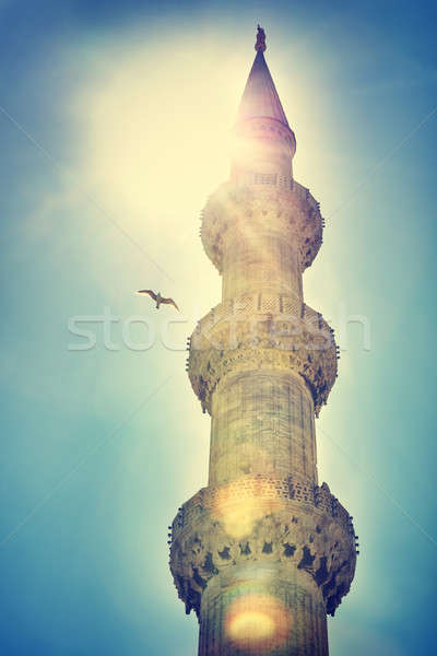 Blue mosque Istanbul Stock photo © Anna_Om