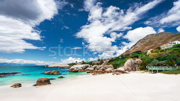 Güney afrika plaj manzara doğa rezerv kasaba Stok fotoğraf © Anna_Om
