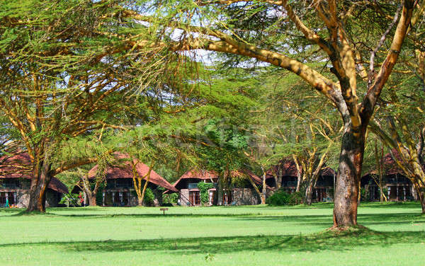 Tourist resort in a woods of Africa Stock photo © Anna_Om