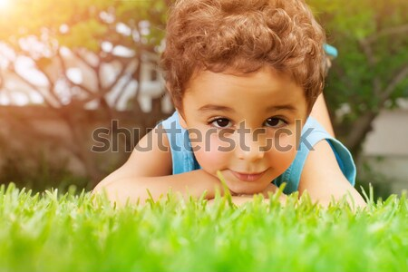 Small boy on green grass Stock photo © Anna_Om