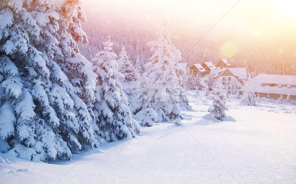 Tél üdülőhely gyönyörű tájkép kicsi kényelmes Stock fotó © Anna_Om