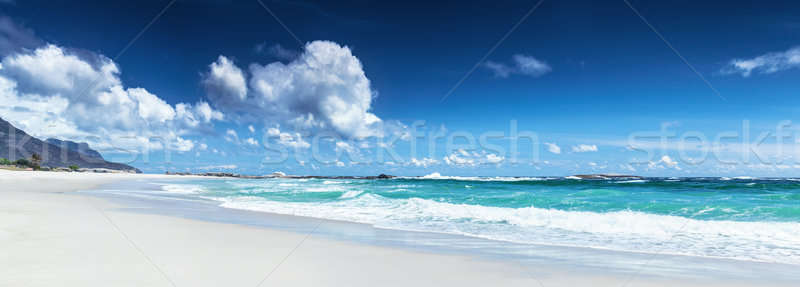 Панорама пляж пейзаж Кейптаун ЮАР панорамный Сток-фото © Anna_Om