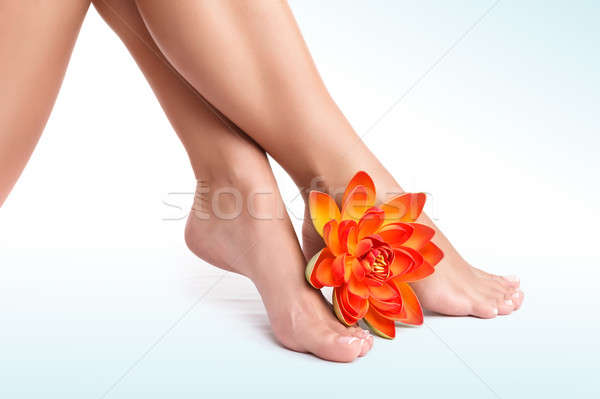 Beautiful women's legs Stock photo © Anna_Om