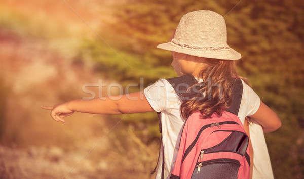 Mejores amigos campamento de verano dos niñas montanas Foto stock © Anna_Om