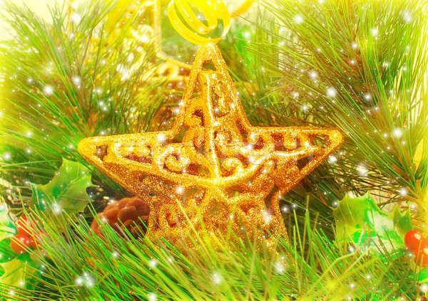 Star decorations Stock photo © Anna_Om