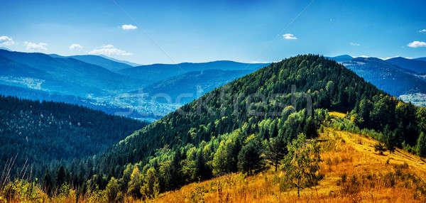 High beautiful mountains Stock photo © Anna_Om