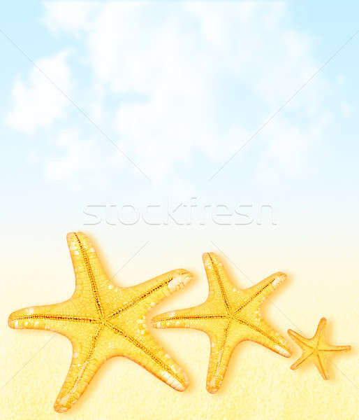 Ora legale vacanze abstract starfish confine cielo Foto d'archivio © Anna_Om