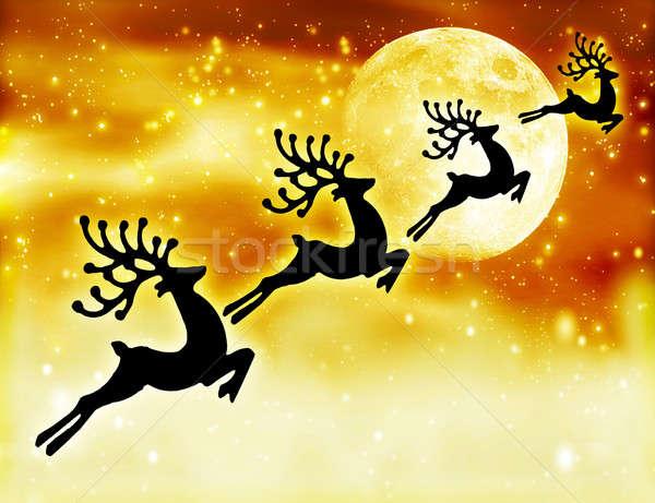 Reindeer silhouette in night sky Stock photo © Anna_Om