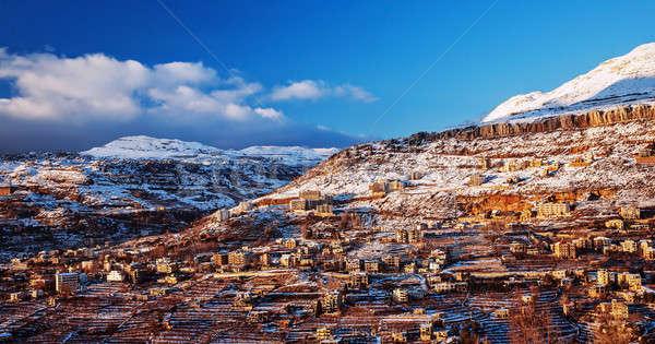 Mountainous town in winter Stock photo © Anna_Om