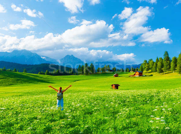 Happy traveler in mountainous valley Stock photo © Anna_Om