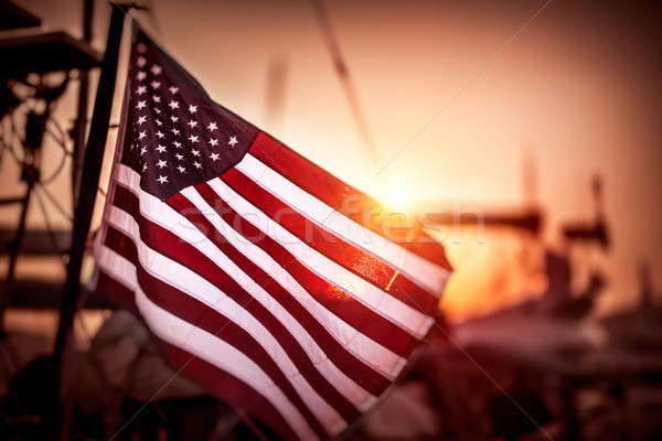 Flag of United States of America Stock photo © Anna_Om