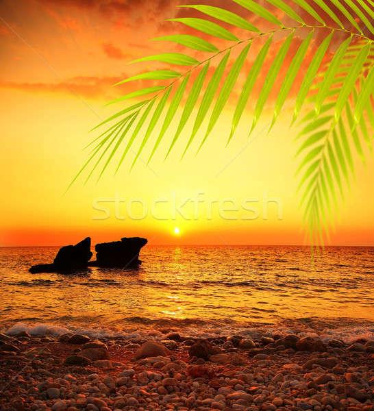 Stok fotoğraf: Gün · batımı · plaj · huzurlu · yaz · manzara · güzel