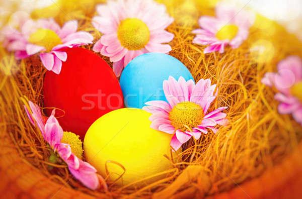 Schönen Ostern Still-Leben drei gefärbt unterschiedlich Stock foto © Anna_Om
