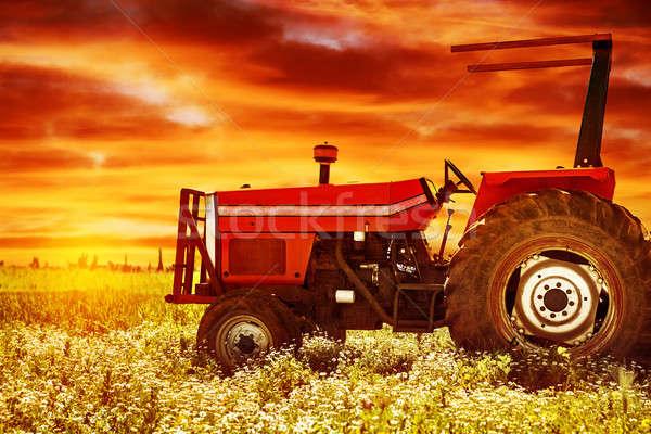 Big tractor on sunset Stock photo © Anna_Om