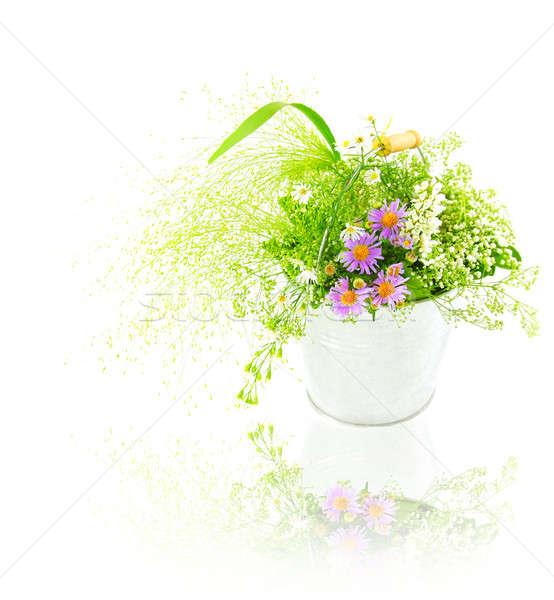 Cubo frescos primavera flores silvestres aislado blanco Foto stock © Anna_Om
