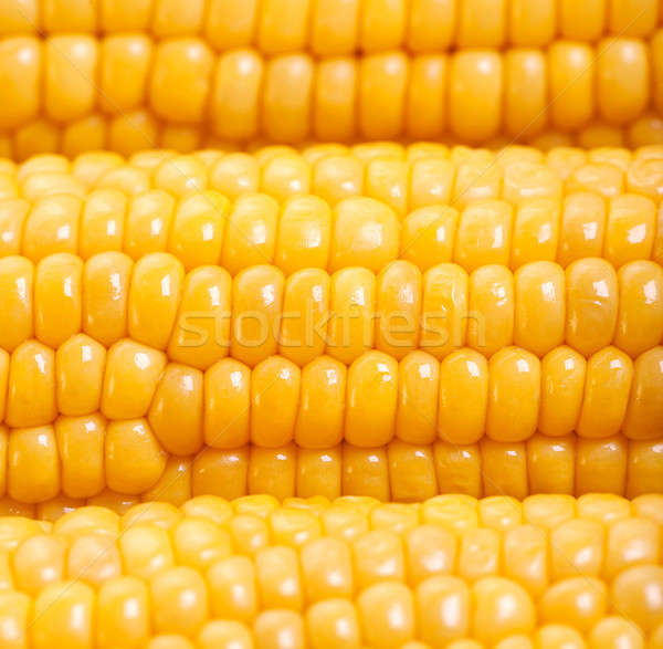 Sweetcorn background Stock photo © Anna_Om