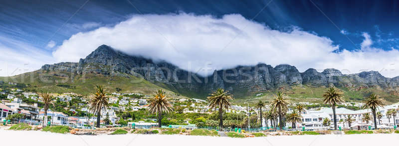 Cape Town beach Stock photo © Anna_Om