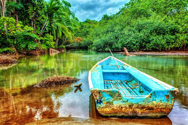 Old boat in tropical river Stock photo © Anna_Om