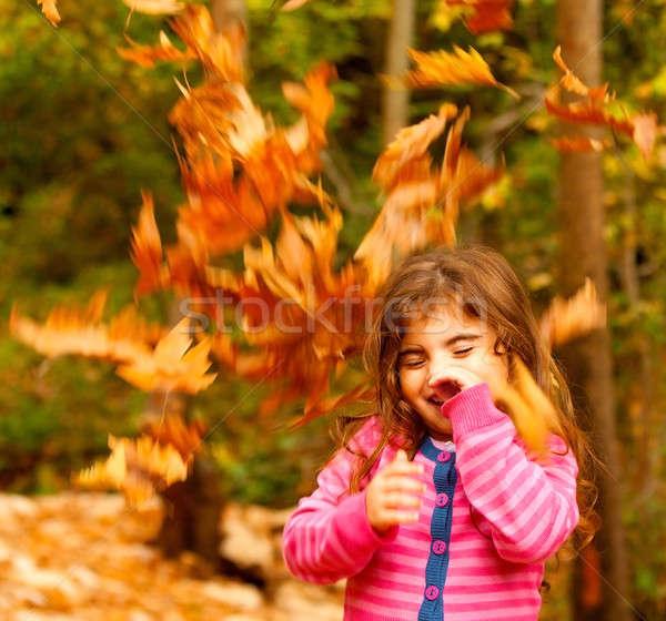 Photo stock: Heureux · enfant · automne · image · faible · cute