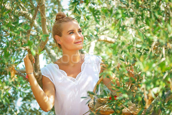 Dreamy woman in olive garden Stock photo © Anna_Om
