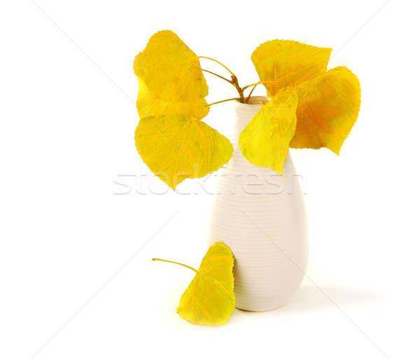 Stok fotoğraf: Sonbahar · yaprakları · sonbahar · kuru · sarı · vazo