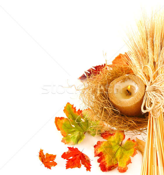 Stock photo: Autumn leaves border