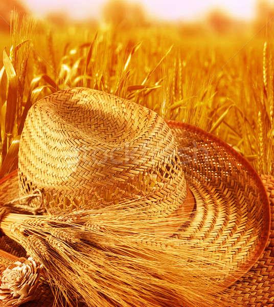 Straw hat on wheat field Stock photo © Anna_Om