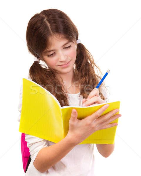 Uczennica piśmie notebooka odizolowany biały egzamin Zdjęcia stock © Anna_Om