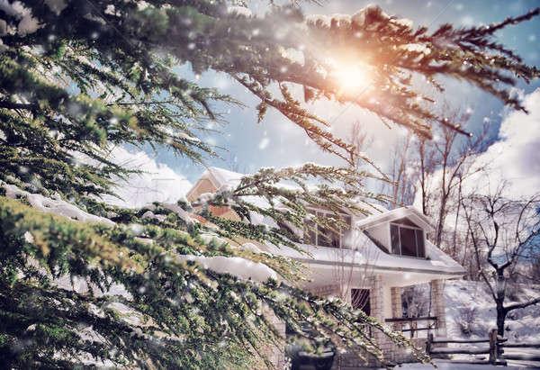 Napos fagyos tél nap vidék kilátás Stock fotó © Anna_Om
