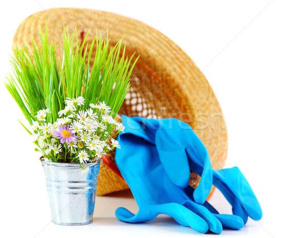 Stock photo: Gardening tools