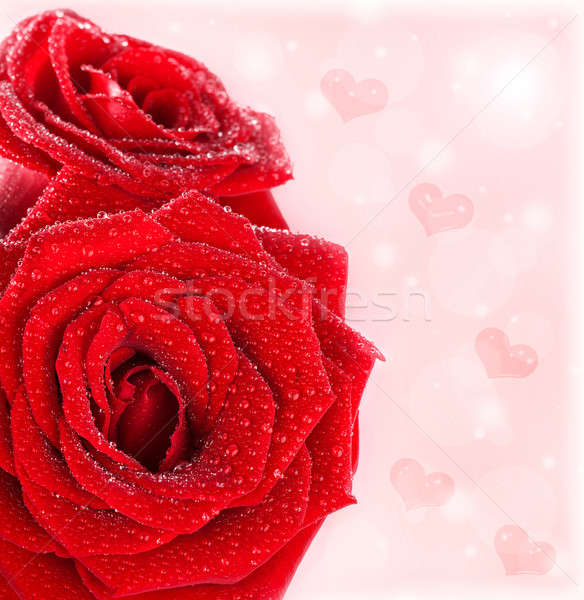 Beautiful red roses border with hearts Stock photo © Anna_Om