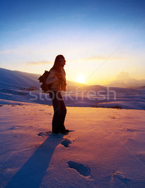 Woman traveler hiking in winter mountains Stock photo © Anna_Om