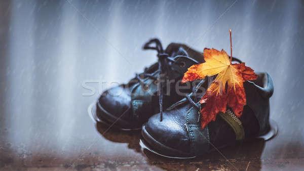 őszi idény közelkép fotó kicsi baba csizma Stock fotó © Anna_Om