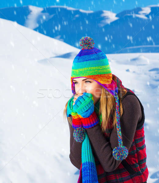 Female in winter mountains Stock photo © Anna_Om
