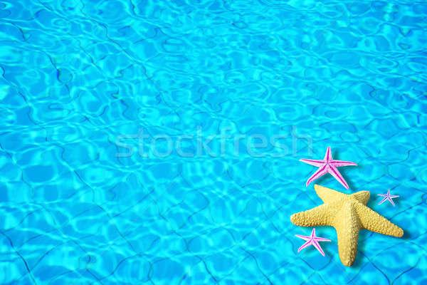 水 海星 圖像 假期 夏令 質地 商業照片 © Anna_Om