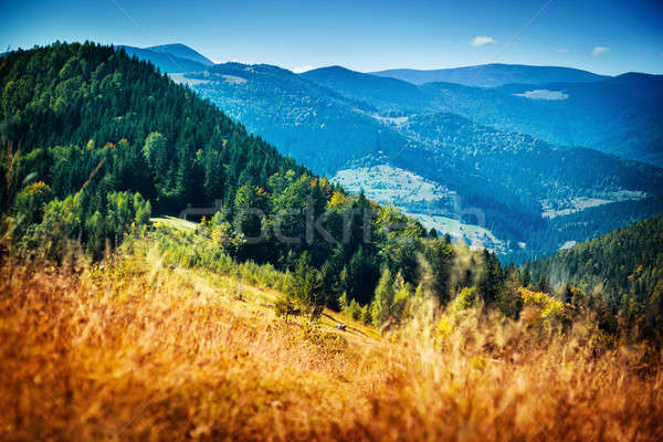Beautiful mountain landscape Stock photo © Anna_Om