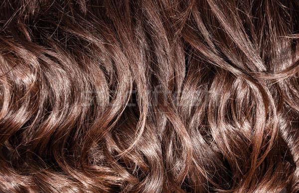 Barna göndör haj gyönyörű egészséges sötét tökéletes Stock fotó © Anna_Om
