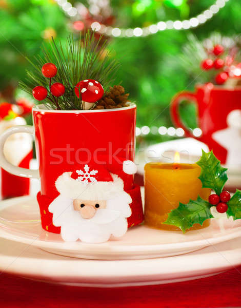 Wintertime table setting Stock photo © Anna_Om